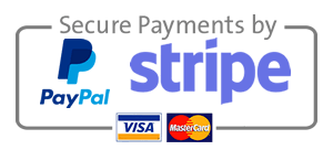 Secure payments by PayPal, Stripe, Visa, Mastercard